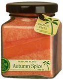 Cube Jar Autumn Spice 6 oz. Aloha Bay
