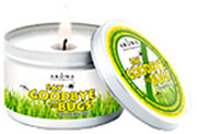 Citronella Plus SAY GOODBYE TO BUGS Large Silver Tin