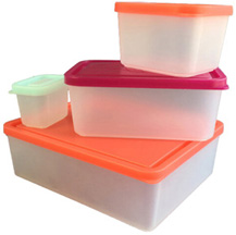 Lunch Box Set of 4 Lunch Containers Sorbet BENTOLOGY