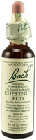 Original Flower Essence Chestnut Bud 0.7 oz. Bach Flower Remedies