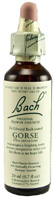 Original Flower Essence Gorse 0.7 oz. Bach Flower Remedies