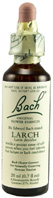 Original Flower Essence Larch 0.7 oz. Bach Flower Remedies